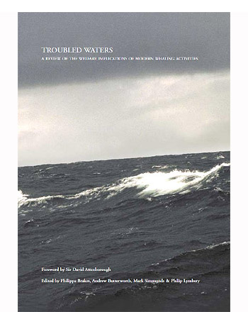 A review on the welfare implications of modern whaling activities.