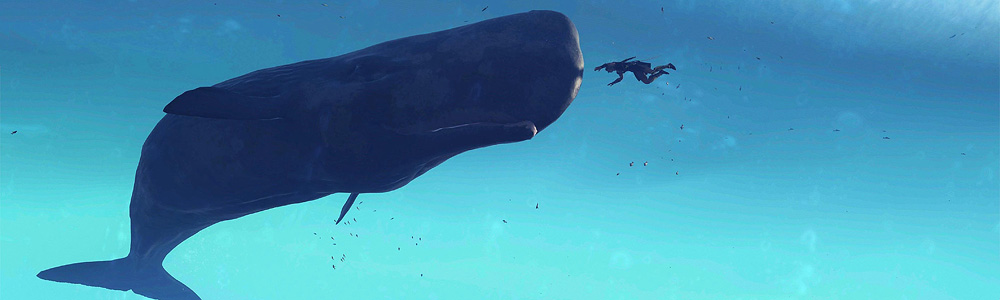 Diver with sperm whale.