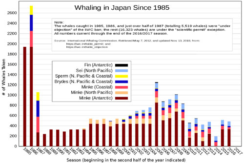 Graph of whaling in Japan since 1975. Whales killed - versus - year